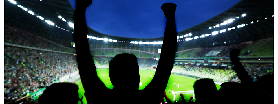 cheering_sports_fans_at_stadium